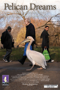 The poster for the film, Pelican Dreams